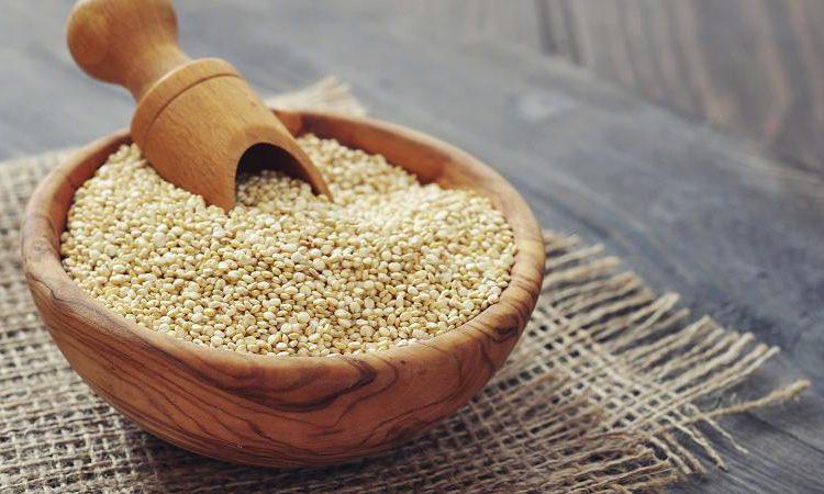 La quinua, la clave de la seguridad alimentaria de la humanidad ...