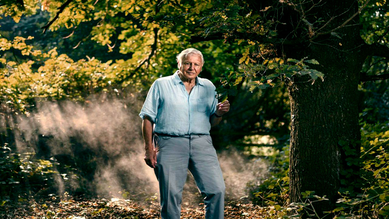David Attenborough Una Vida En Nuestro Planeta Caretas Caretas Tv